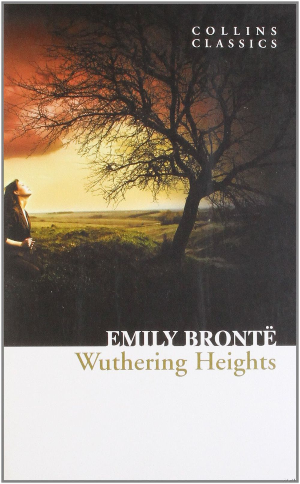 Thesis of wuthering heights