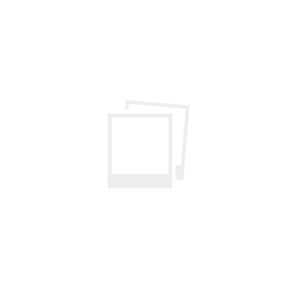 Решебник по рабочей тетради 6 класс лисов шарапа борщевская