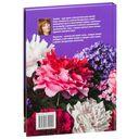 Цветы и композиции из фоамирана — фото, картинка — 4