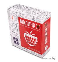 "Электронный конструктор ""Малина Z"""