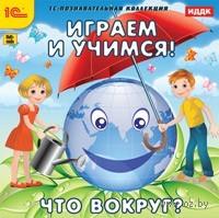 Играем и учимся. Что вокруг?