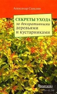 Секреты ухода за декоративными деревьями и кустарниками