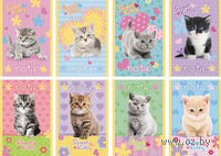 "Блокнот ""Sweet Kitty"""