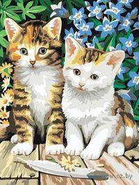 """Картина по номерам """"Котята"""" (400х300 мм)"""