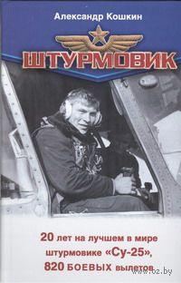 Штурмовик. Александр Кошкин, Е. Зубарев