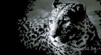 "Вышивка крестом ""Леопард"""