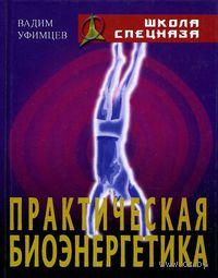 Практическая биоэнергетика. Вадим Уфимцев