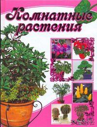 Комнатные растения. Лариса Бурлуцкая