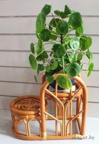 Подставка для цветочных горшков из ротанга на 2 шт (22*39*36 см)