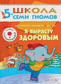Я вырасту здоровым. Для занятий с детьми от 5 до 6 лет. Дарья Денисова