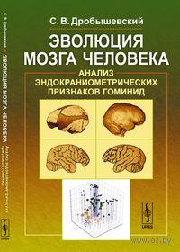 Эволюция мозга человека. Анализ эндокраниометрических признаков гоминид. Станислав Дробышевский