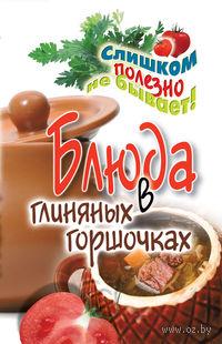 Блюда в глиняных горшочках. Д. Нестерова