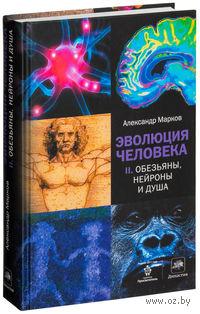 Эволюция человека. В 2 книгах. Книга 2. Обезьяны, нейроны и душа. Александр Марков