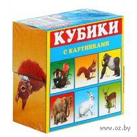 """Кубики с картинками """"Животные"""" (4 шт.)"""