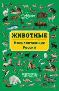 Животные. Млекопитающие России