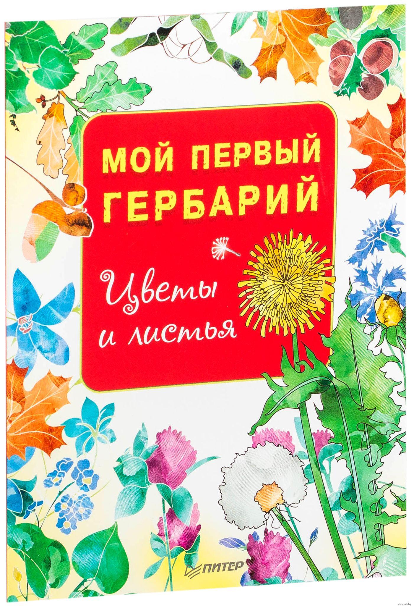 Мой первый гербарий. Цветы и листья» - купить книгу «Мой первый ... 442c053947a