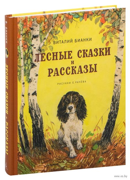 Лесные сказки и рассказы — фото, картинка