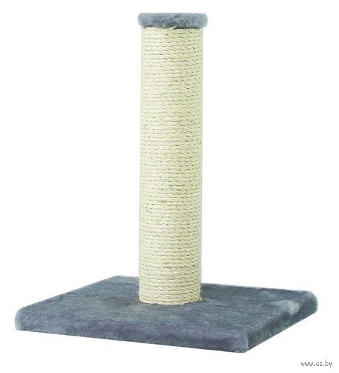 Когтеточка (30х33х43 см; серая) — фото, картинка