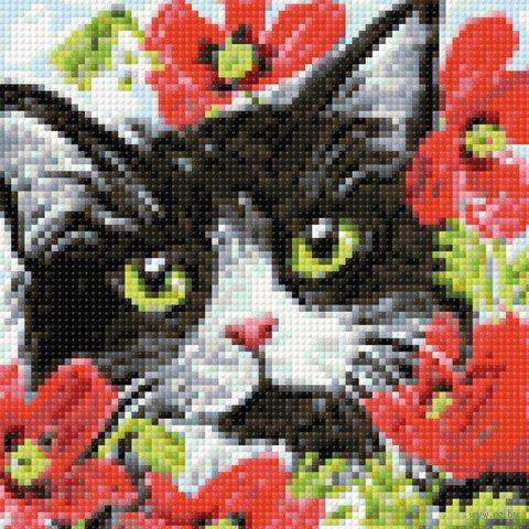 """Алмазная вышивка-мозаика """"Кот в цветах"""" (200х200 мм) — фото, картинка"""