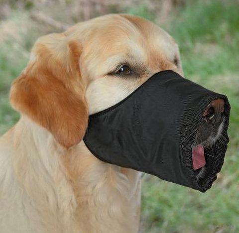 Намордник для собак нейлоновый регулируемый (размер L, 30 см/16-44 см, арт. 1924)