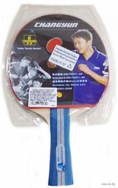 Ракетка для настольного тенниса (арт. S075) — фото, картинка