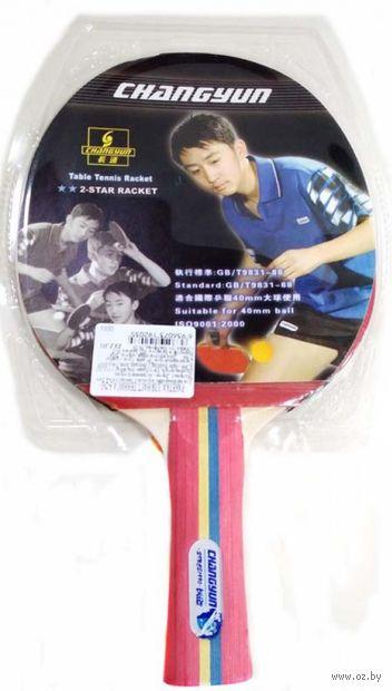 Ракетка для настольного тенниса (арт. S-203) — фото, картинка