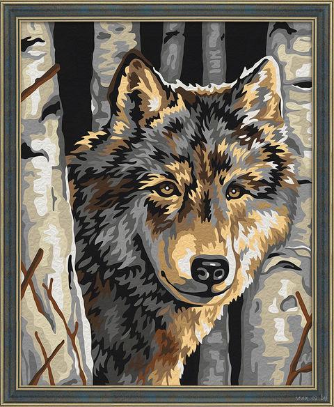 "Картина по номерам ""Волчий портрет"" (400х500 мм) — фото, картинка"