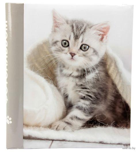 """Фотоальбом """"Котёнок"""" (10 листов; арт. 64464) — фото, картинка"""