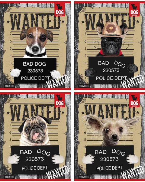 """Тетрадь в клетку """"Bad Dog"""" (40 листов)"""