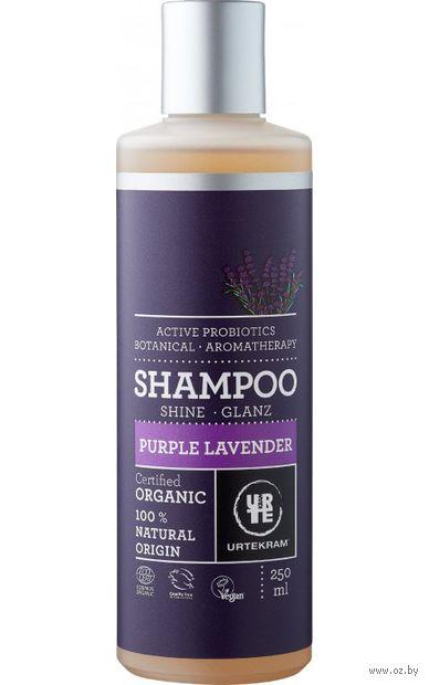 "Шампунь для волос ""Пурпурная лаванда"" (250 мл) — фото, картинка"
