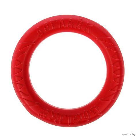"""Игрушка для собак """"Кольцо 8-мигранное"""" (26,5 см) — фото, картинка"""