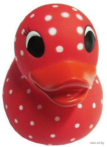 """Игрушка для купания """"Резиновый утенок. Красный в горошек"""""""