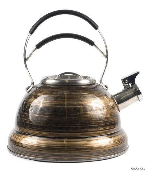 Чайник металлический со свистком (2,7 л; арт. GS-0477BY)