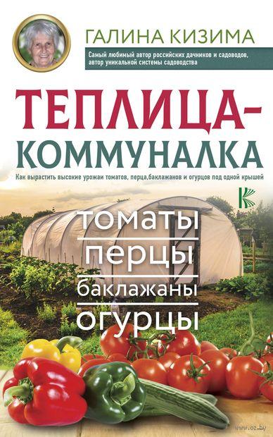 Теплица-коммуналка. Как вырастить высокие урожаи томатов, перца, баклажанов и огурцов под одной крышей — фото, картинка