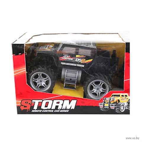 """Автомобиль на радиоуправлении """"Storm"""""""