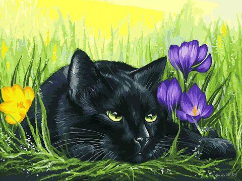 """Картина по номерам """"Кот и крокусы"""" (300х400 мм) — фото, картинка"""