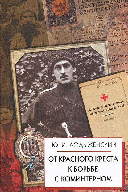 От Красного Креста к борьбе с Коминтерном — фото, картинка