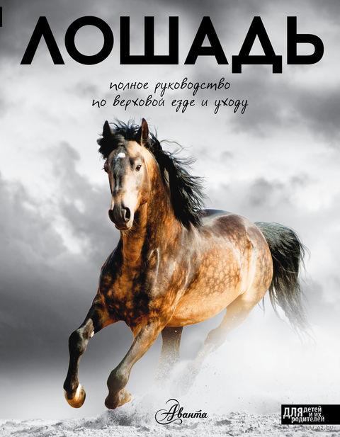 Лошадь. Полное руководство по верховой езде и уходу — фото, картинка