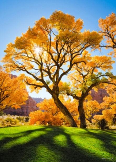 """Алмазная вышивка-мозаика """"Осеннее дерево"""" (400х500 мм) — фото, картинка"""