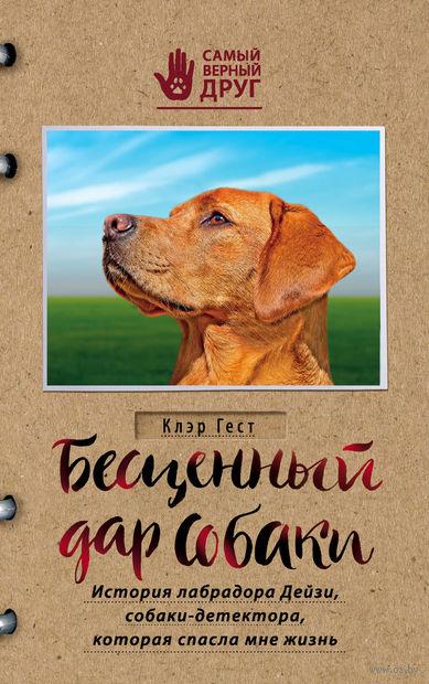 Бесценный дар собаки. История лабрадора Дейзи, собаки-детектора, которая спасла мне жизнь — фото, картинка