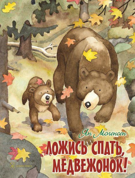 Ложись спать, медвежонок! — фото, картинка