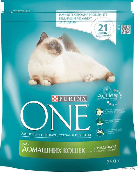 Корм сухой для кошек (750 г; индейка и цельные злаки) — фото, картинка
