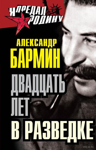 Двадцать лет в разведке. Александр Бармин
