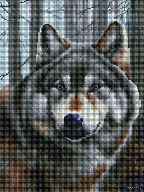 "Алмазная вышивка-мозаика ""Волк"" (300х400 мм) — фото, картинка"