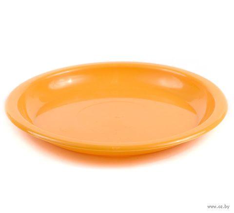 Тарелка пластмассовая (160 мм) — фото, картинка