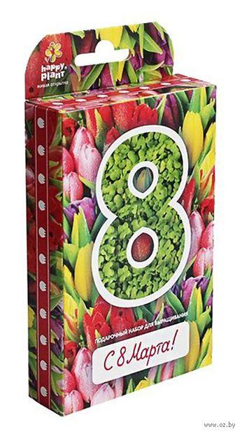 """Набор для выращивания растений """"С 8 Марта. Тюльпаны"""" — фото, картинка"""