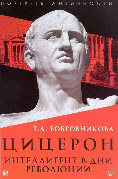 Цицерон. Интеллигент в дни революции — фото, картинка