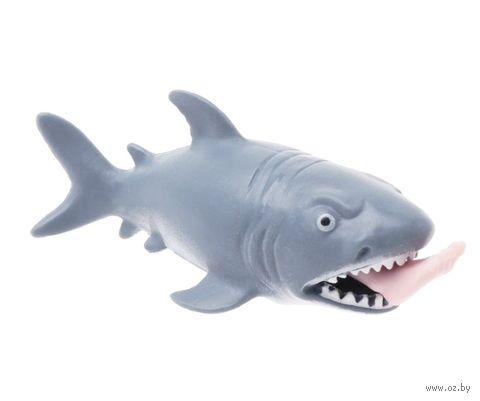 """Игрушка-антистресс """"Акула"""" — фото, картинка"""