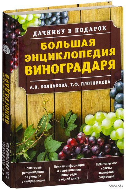 жвакин виктор 10 шагов к успеху начинающего виноградаря