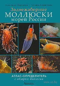 Заднежаберные моллюски морей России. Александр Мартынов, Татьяна Коршунова